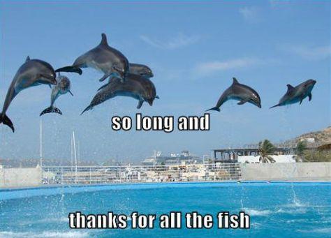 intelligente dolfijnen