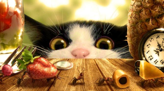 Aparte bijbeluitgave voor huisdieren